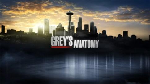 greys-anatomy-saison-12-logo