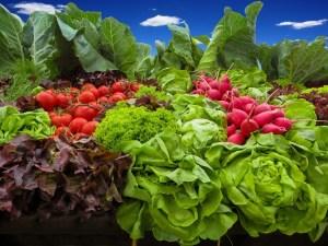 vegetables-905382_1920