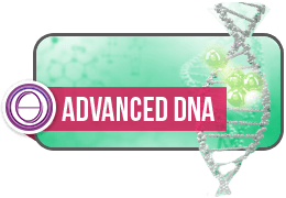 ThetaHealing Practitioner Course: Advanced DNA