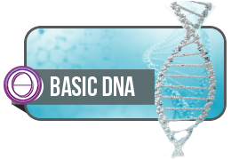 ThetaHealing Practitioner Course: Basic DNA