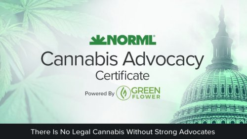 norml advocacy program with green flower