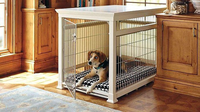 Köpek evi için wolter