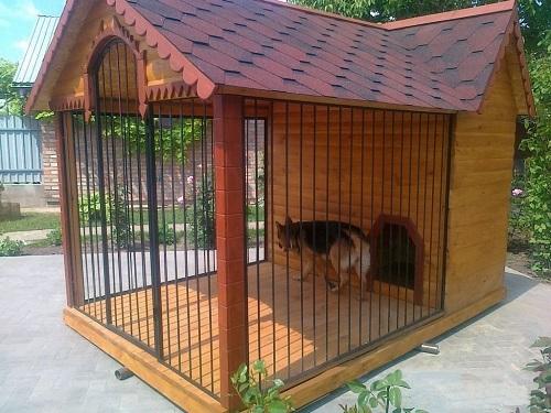 Comodi custodie per cani: fai da te senza spesa e errori