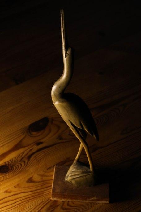Stork. Copyright Fiona Michie.