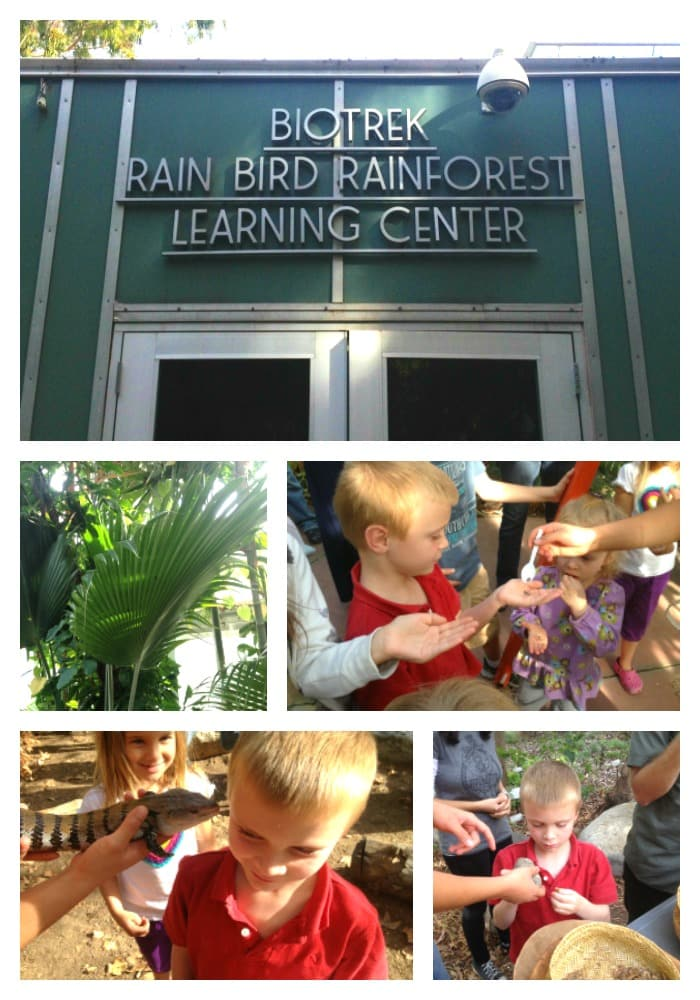 Visit Southern California's only living rainforest called the BioTrek Rain Bird Rainforest Learning Center in Pomona. Through its greenhouse, garden, and labs, BioTrek brings students and the public both hands-on and electronic educational experiences of the tropical rainforest, aquatic environments of the tropics and California, and California indigenous plants and people.