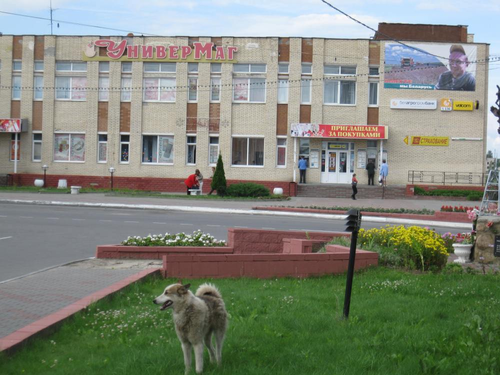 Volozhin, Belarus Photos (1/6)