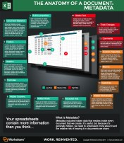 Metadata-Infographic--Excel-FINAL-small