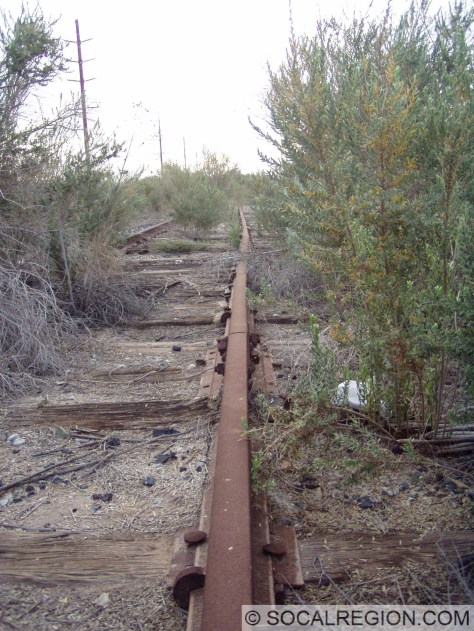 Rails of the Holtville Interurban bent at the Imperial Fault crossing. These tracks have since been removed.
