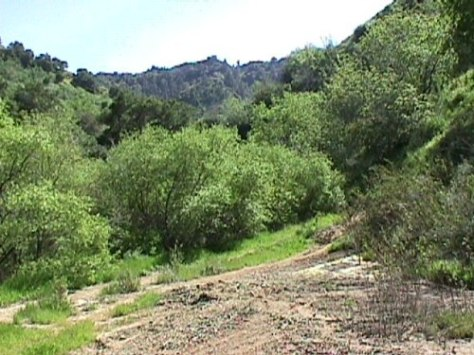 https://i1.wp.com/socalregion.com/wp-content/uploads/wiley_canyon_at_seep.jpg?w=474 (67786 bytes)
