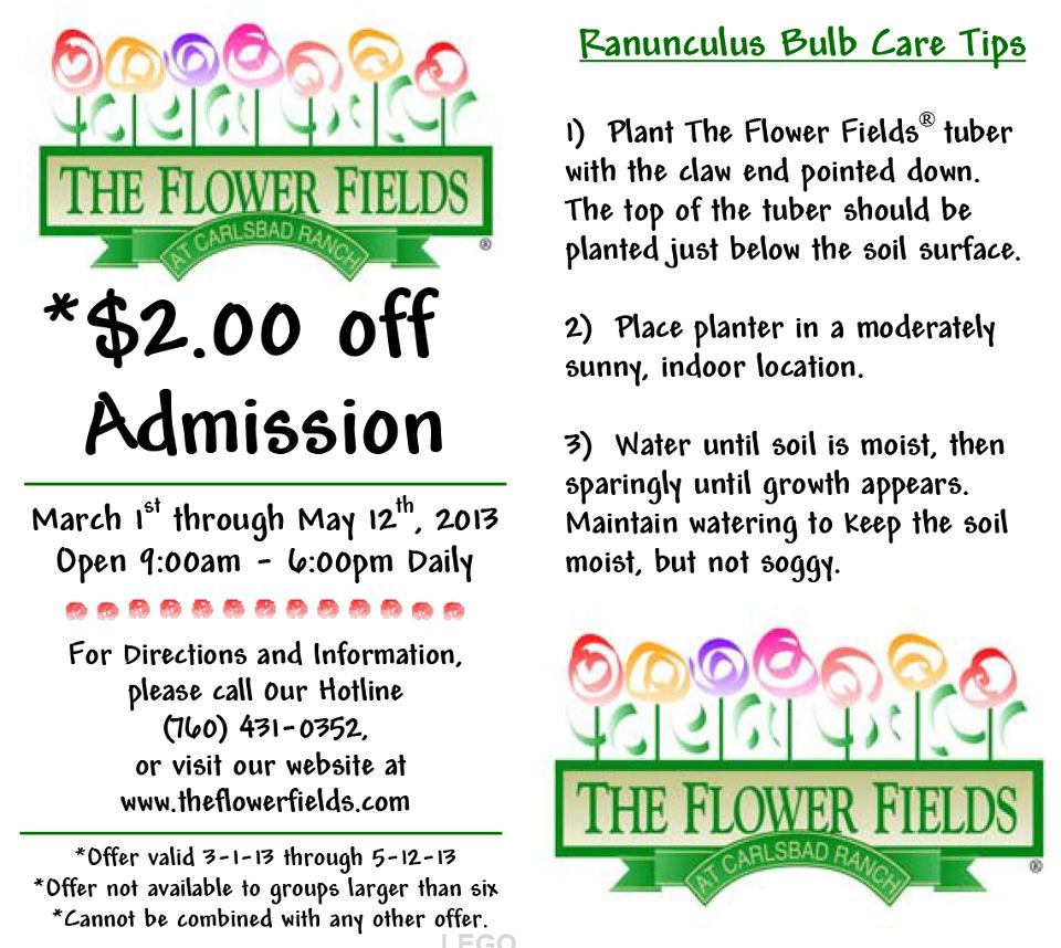 · Get FTD Flowers Coupon 50% Off in December ! FTD Flowers Coupon. Note: The 50% Coupon is unavailable in December, but get up to 20% off today!
