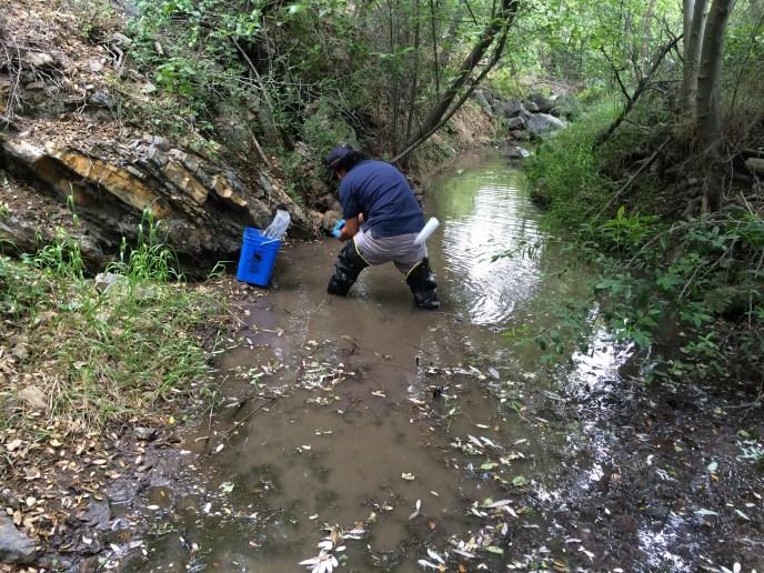 Silverado Creek