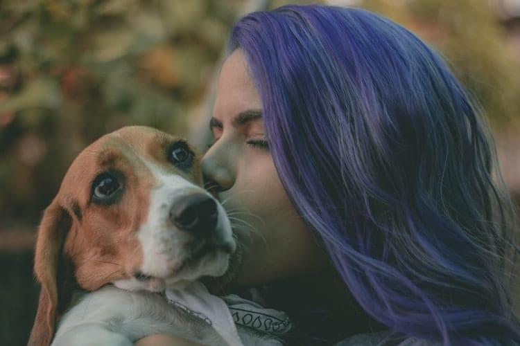 Pet Friendly Rehab Center