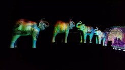 Video projections play on elephant statues for Electric L.A.phants