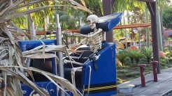 Skeletons experiencing the rides