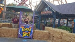 The only ride here is a sugar rush