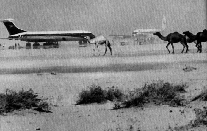 Airplanes and Camels. The airliners on the ground at Dawson Airfield during the PFLP-hosted press conference. 1970. Source: http://en.wikipedia.org/wiki/File:Dawsonfieldcamels.jpg. Public Domain.