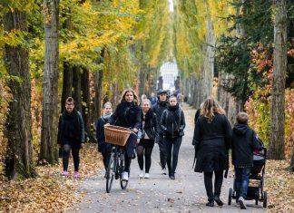 Gående og cyklende ved Assistens Kirkegård, Nørrebro, København. 24/10 2015 Foto: Kristoffer Trolle