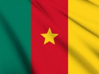 Cameroon - サッカーカメルーン代表のベストメンバー・フォーメーションを読む