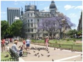 Plaza Mayor, le centre historique de Buenos Aires