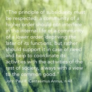 """""""... the principle of subsidiarity must be respected: a community of a higher order should not interfere in the internal life of a community of a lower order, depriving the later of its functions, but rather should support it in case of need and help to coordinate its activity with the activities of the rest of society, always with a view to the common good."""" John Paul II, Centesimus Annus, n 48"""