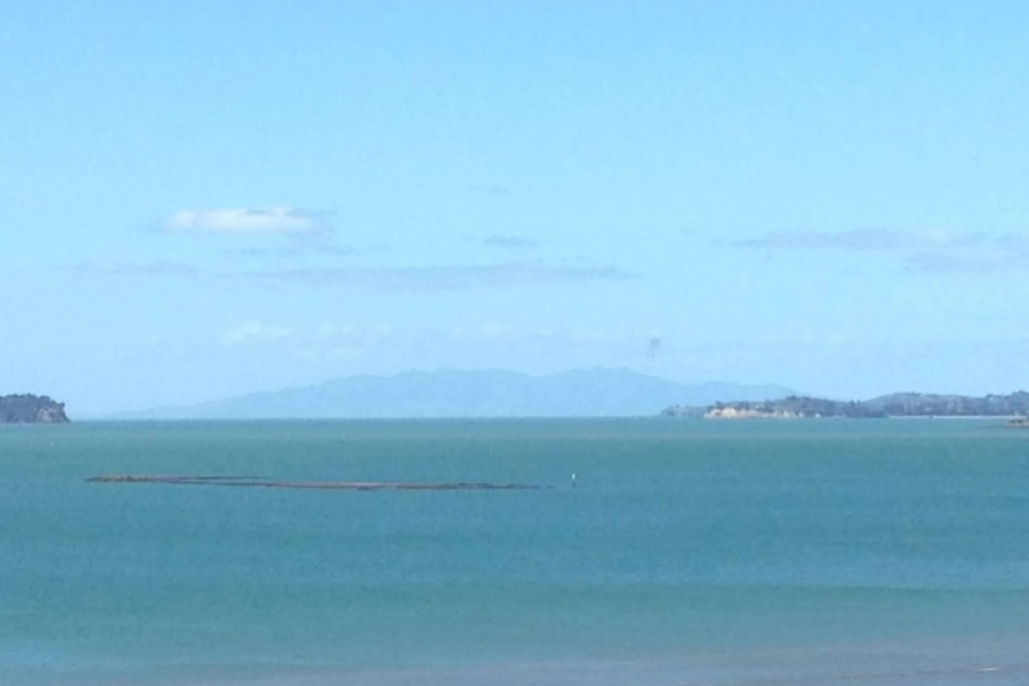 Photo: Sandie Cornish. Auckland looking out to sea