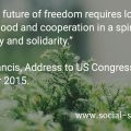 """""""Building a future of freedom requires love of the common good and cooperation in a spirit of subsidiarity and solidarity."""" Pope Francis, Address to US Congress, 24 September 2015"""