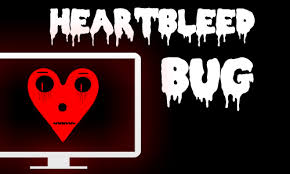 Heartbleed Bug: We Got You Covered