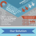DNS Security Infographic