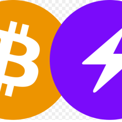 What is a Lightning Network in Cryptocurrency?
