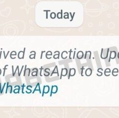 WhatsApp is Testing a New Feature — Message Reactions