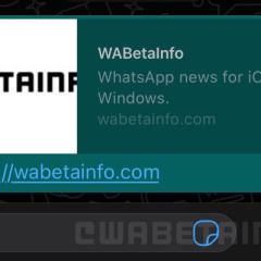 WhatsApp testing dedicated Pay button