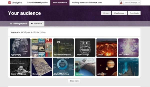 Audience-SC-Pinterest