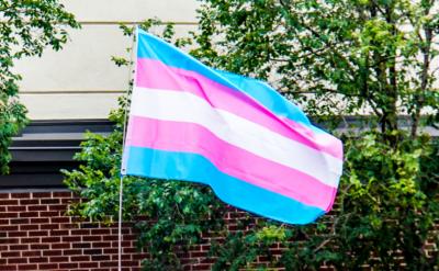 Transperson flagga