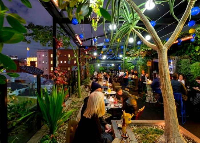 seated patrons drinking on loop roof & loop top rooftop bar at night under lanterns with city lights in background