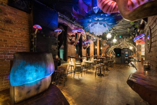 magical alice in wonderland themed bar