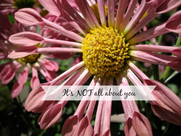 it's not all about you flower