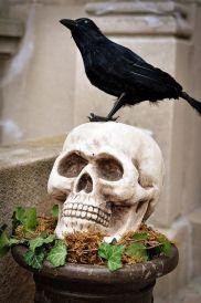 Halloween Decor 8