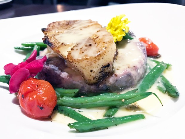 best-dining–hotels-in-Washington-DC– melrose georgetown-hotel