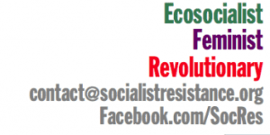 Feminism and Ecosocialism: Debate and Action @ Manchester Friends Meeting House