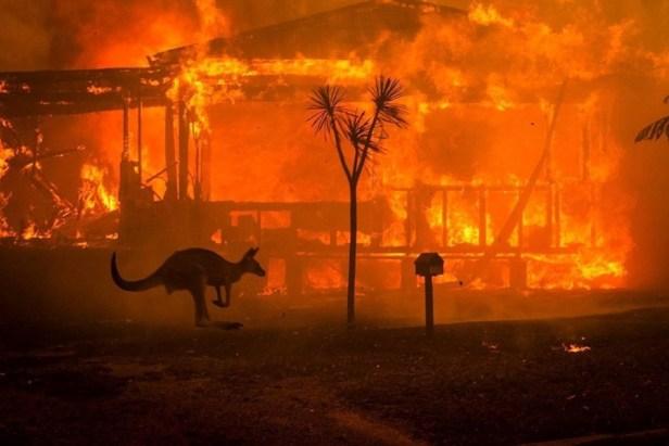 Jan. 2020 Austr. fire (Greta Thunberg)