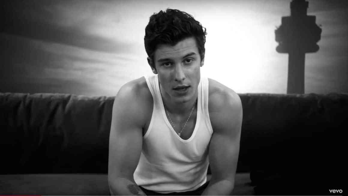 Shawn Mendes Brings on the Sexy for 'If I Can't Have You' Video