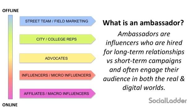 What is an ambassador
