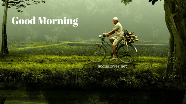 images of good morning with nature