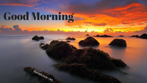 nature island good morning hd quality picture
