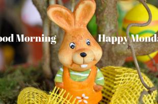 Happy Monday Good Morning image for whatsapp