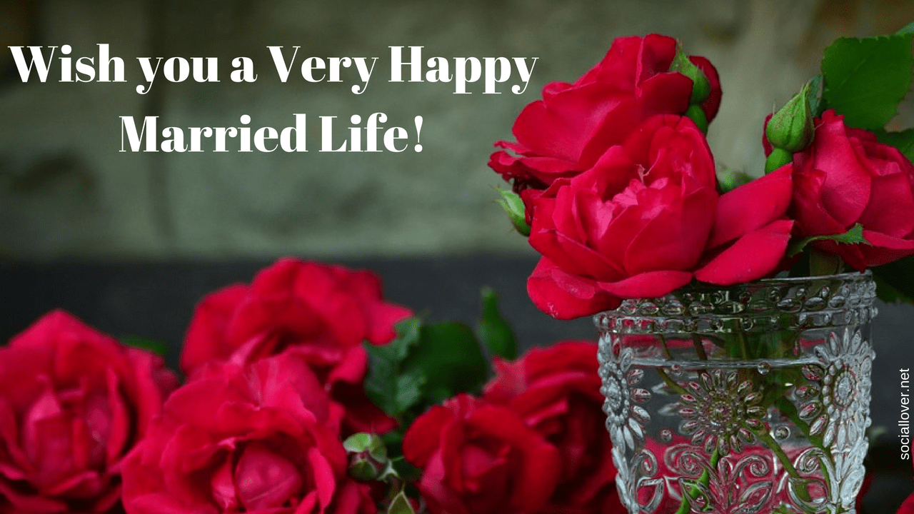 happy married life wedding day pictures with wishes and quotes