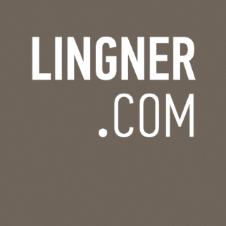 Social Media Strategie, Lingner Logo