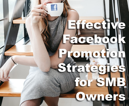 Effective Facebook Promotion Strategies For SMB Owners
