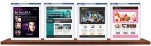 Make Use Of Facebook Applications