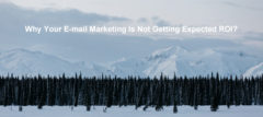 Why Your E-mail Marketing Is Not Getting Expected ROI?
